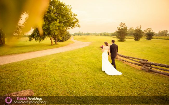 falcon ridge weddings